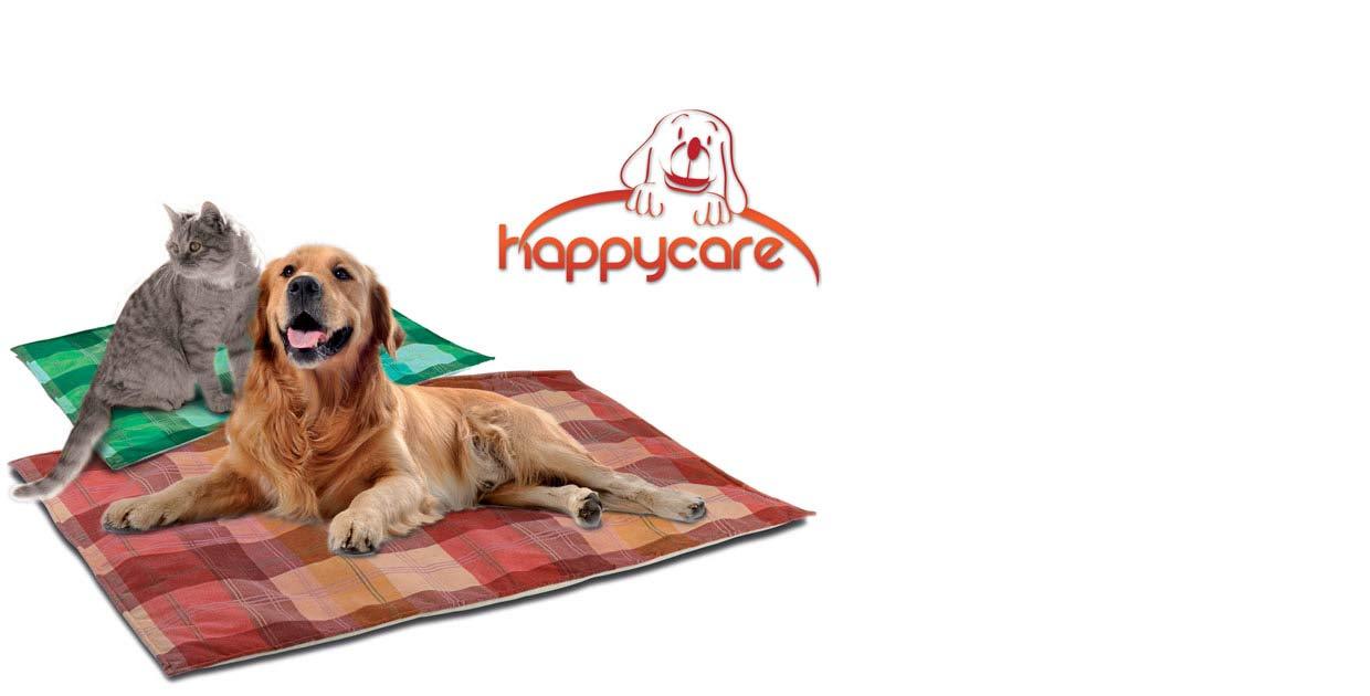 slide-home-page-happycare2